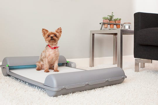 The BrilliantPad.® is a self-cleaning potty designed for adult small dogs that have trained on pads or for puppies learning to use pads.