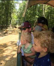 Adults and children enjoy seeing some of the 40 species of animals at McClain.