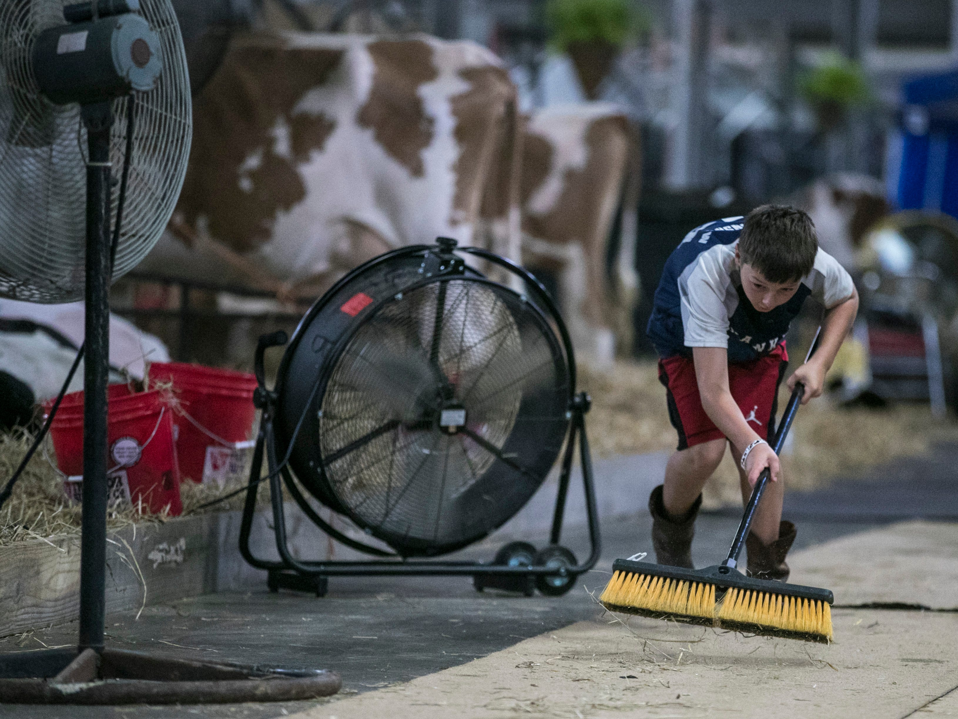 Andrew Henshaw of Grayson County, Kentucky keeps the walkway clear near his family's dairy cow stalls on the first day of the Kentucky State Fair.