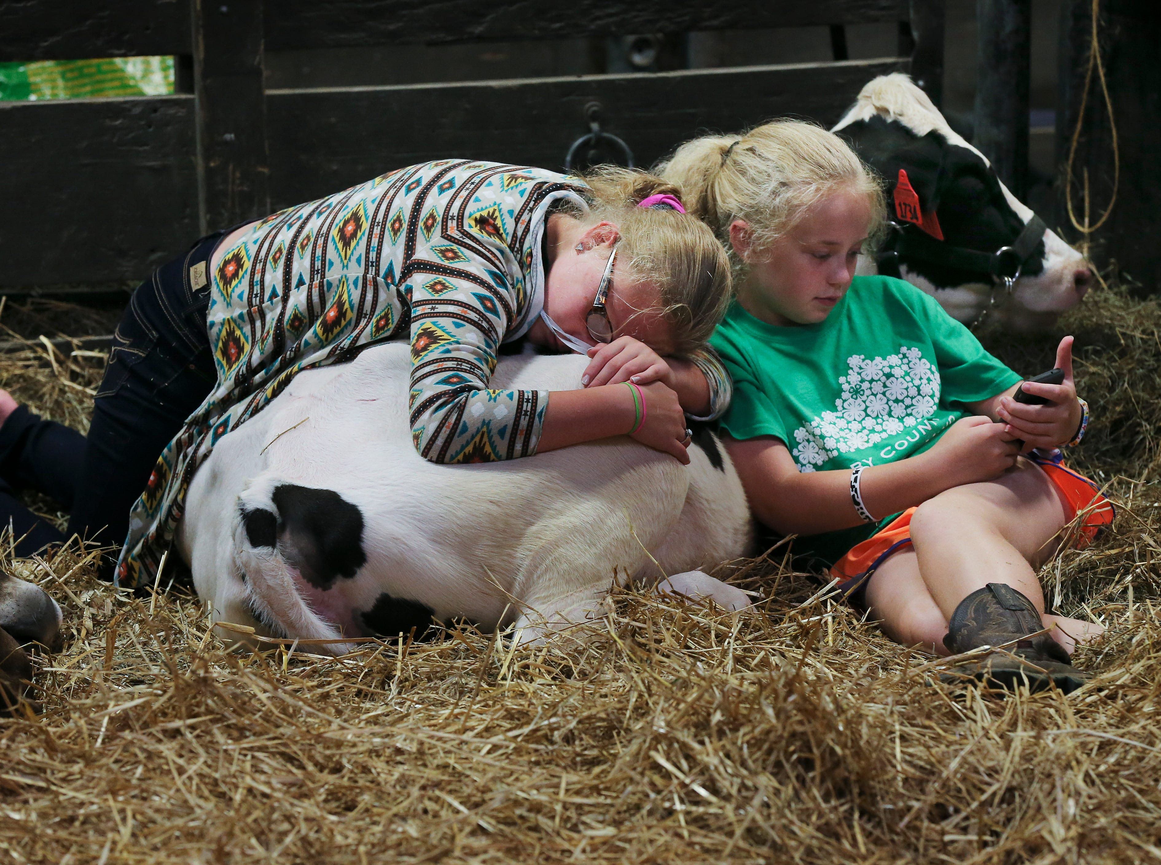 Harley Dempsey, 11, left, and Lilly Phillips, 12, relax with a dairy cow during the first day of the Kentucky State Fair.