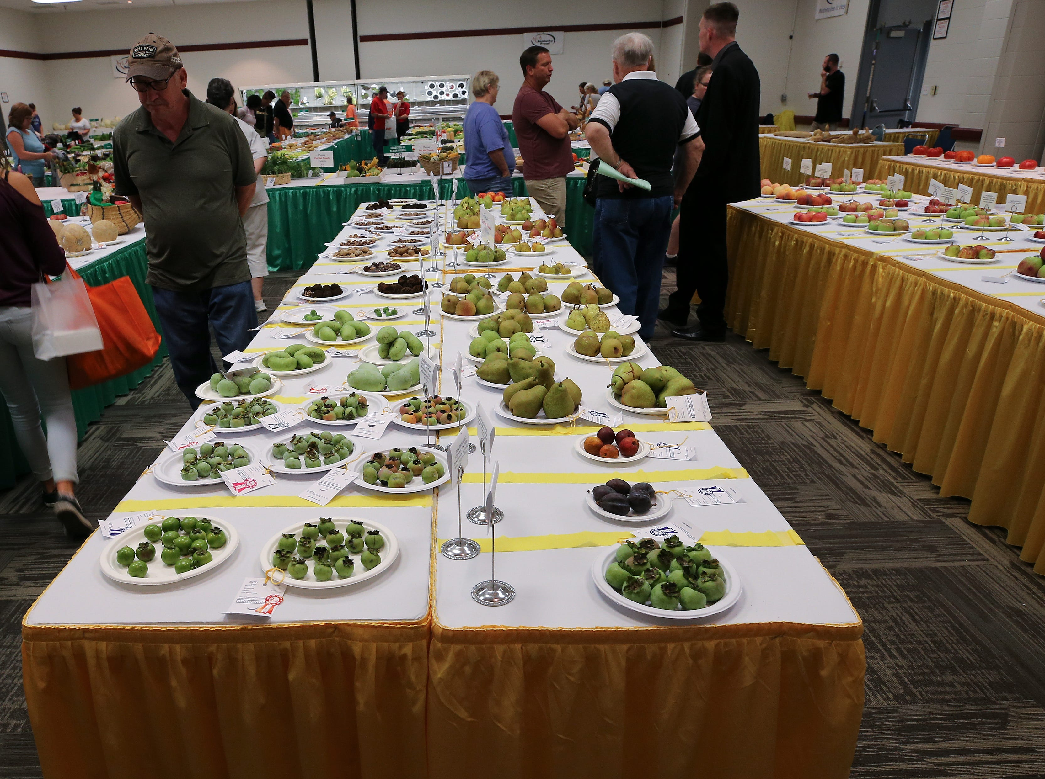 Agricultural displays on the first day of the Kentucky State Fair.Aug. 16, 2018