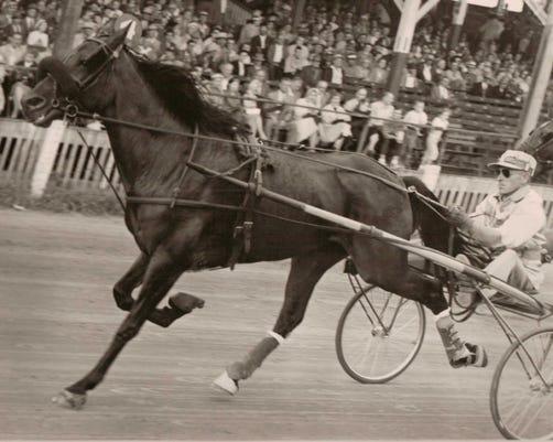 2004 53 5 Sulkie Races