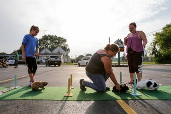 Paws 'N Pals 4-H club takes its rabbits out for hopping practice before competition at the Manitowoc County Fair.