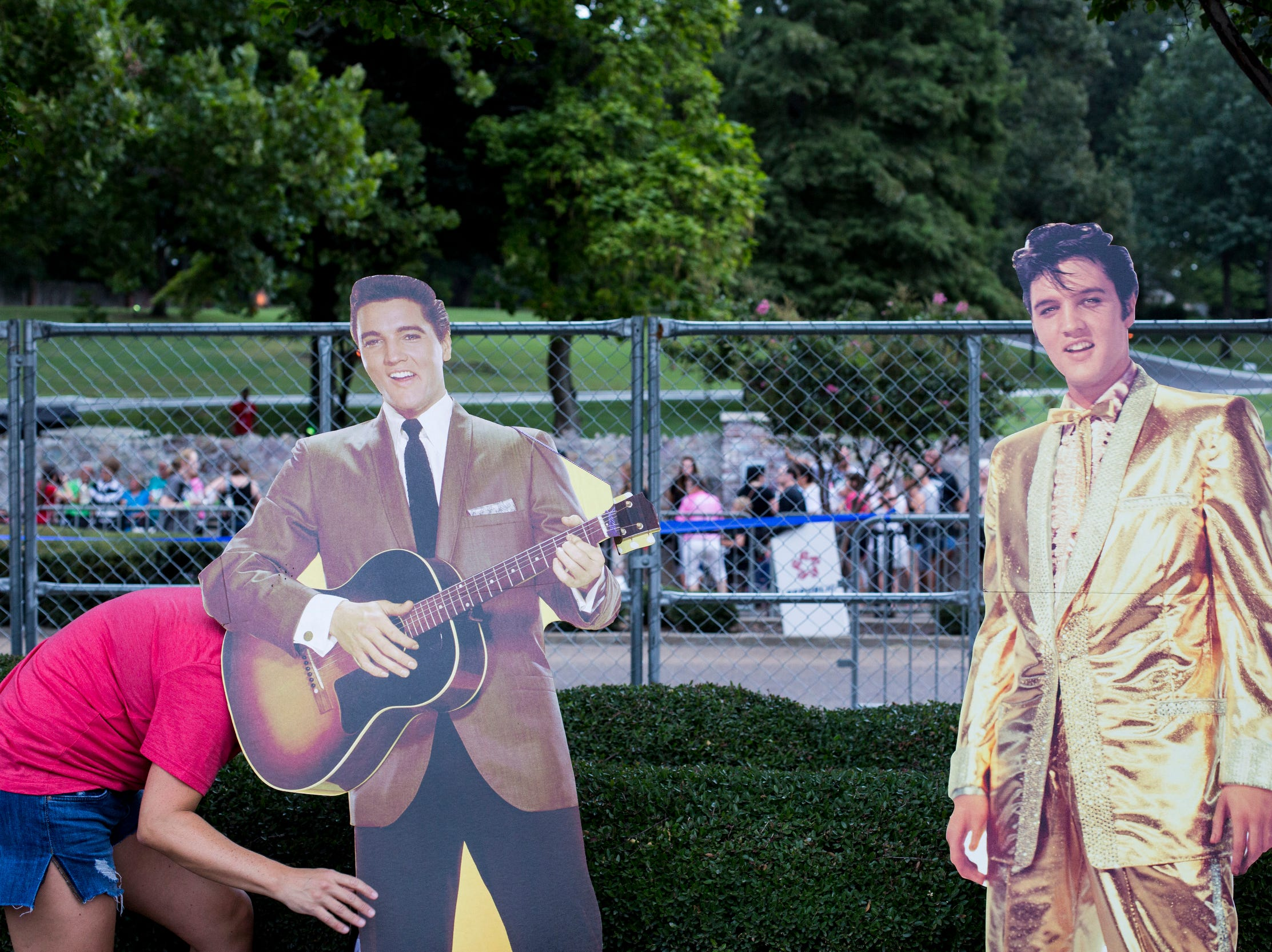 August 14, 2018 - Breland Fischer, from Memphis, works to keep cardboard cutouts of Elvis standing during the 41st anniversary of Presley's Aug. 16 death.