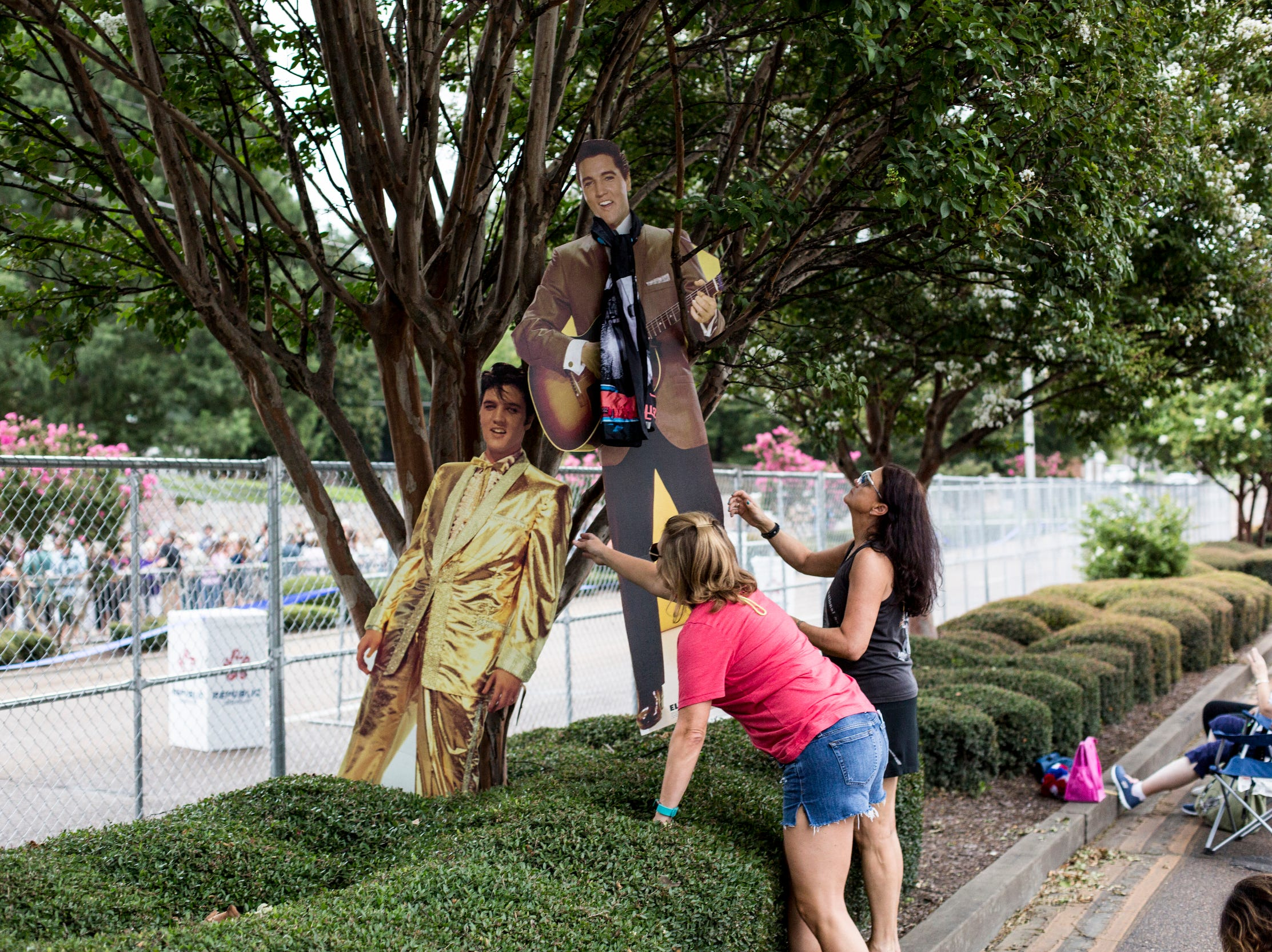 August 14, 2018 - Breland Fischer, left, and Vicky Prince, right, work to keep cardboard cutouts of Elvis standing during the 41st anniversary of Presley's Aug. 16 death.