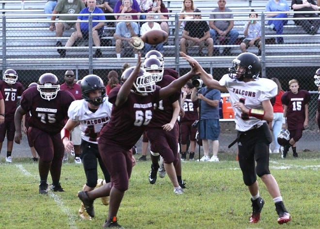 The FMS Falcons defeat the Dickson Dragons August 7, 2018.