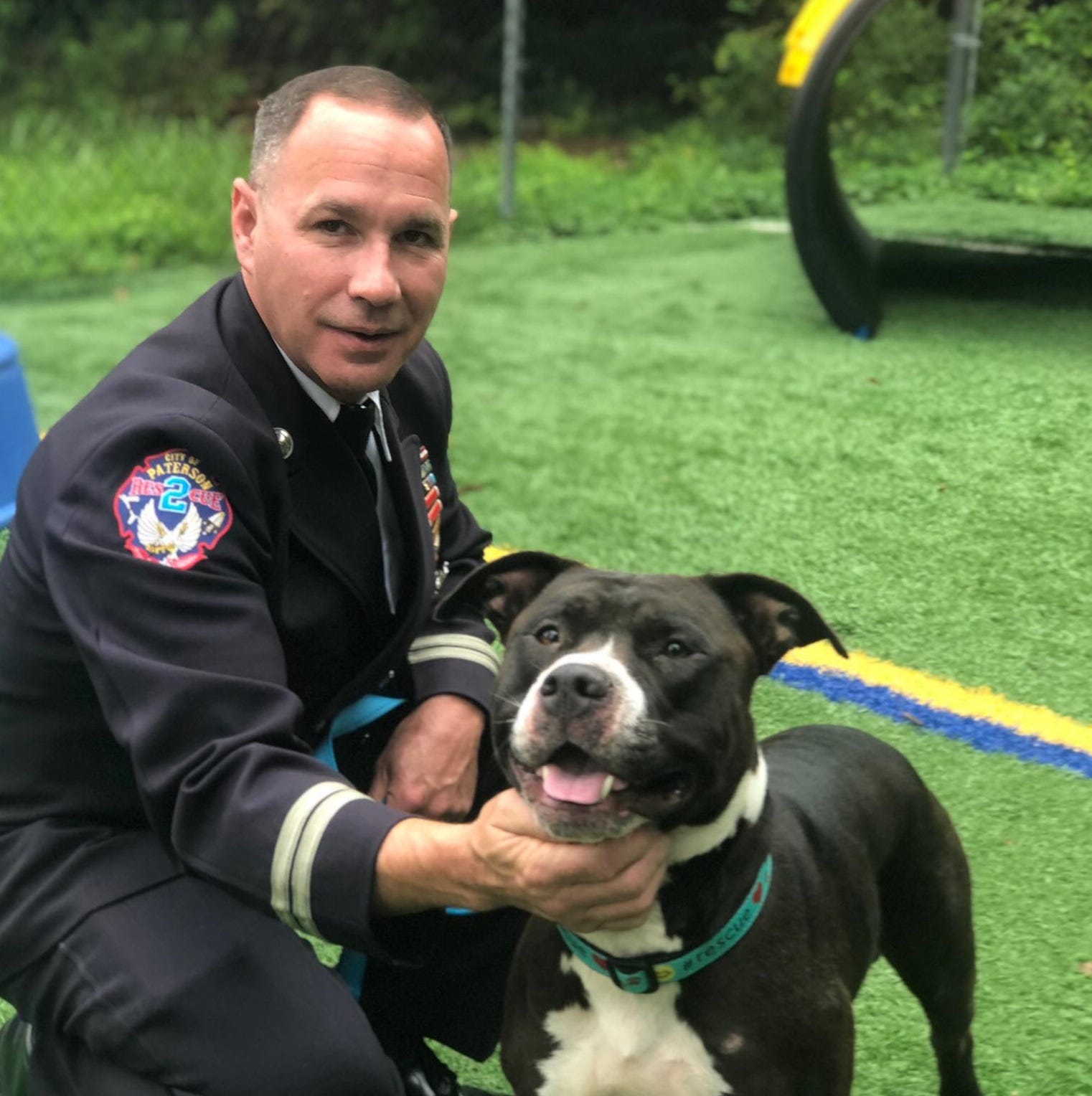 Paterson Fire Department to adopt dog that had been tossed onto Great Falls ledge