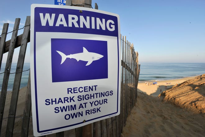 A sign warns visitors to Long Nook Beach of recent shark sightings, Wednesday, Aug. 15, 2018 in Truro, Mass.  A man swimming off Cape Cod was attacked by a shark on Wednesday and was airlifted to a hospital. It was the first shark attack on a human on the popular summer tourist destination since 2012.