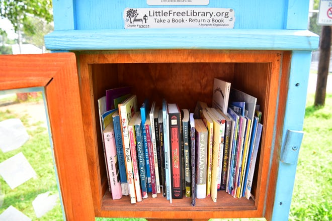 The Little Free Library drop box at Tyrone Collins Park in Paterson, NJ.