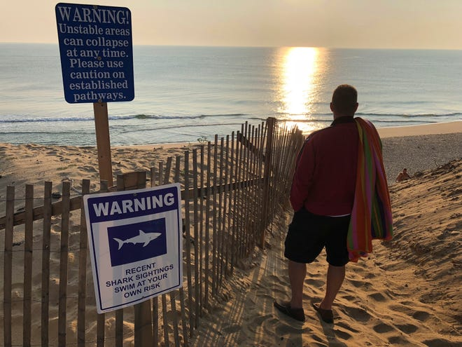 Steve McFadden, 49, of Plattsburgh, N.Y. gazes at Long Nook Beach in Truro, Mass.,  on Thursday, Aug. 16, 2018. Authorities closed the Cape Cod beach to swimmers after a man was attacked by a shark on Wednesday,  the first attack on a person in Massachusetts since 2012. The unidentified victim survived the attack and was airlifted to a Boston hospital.