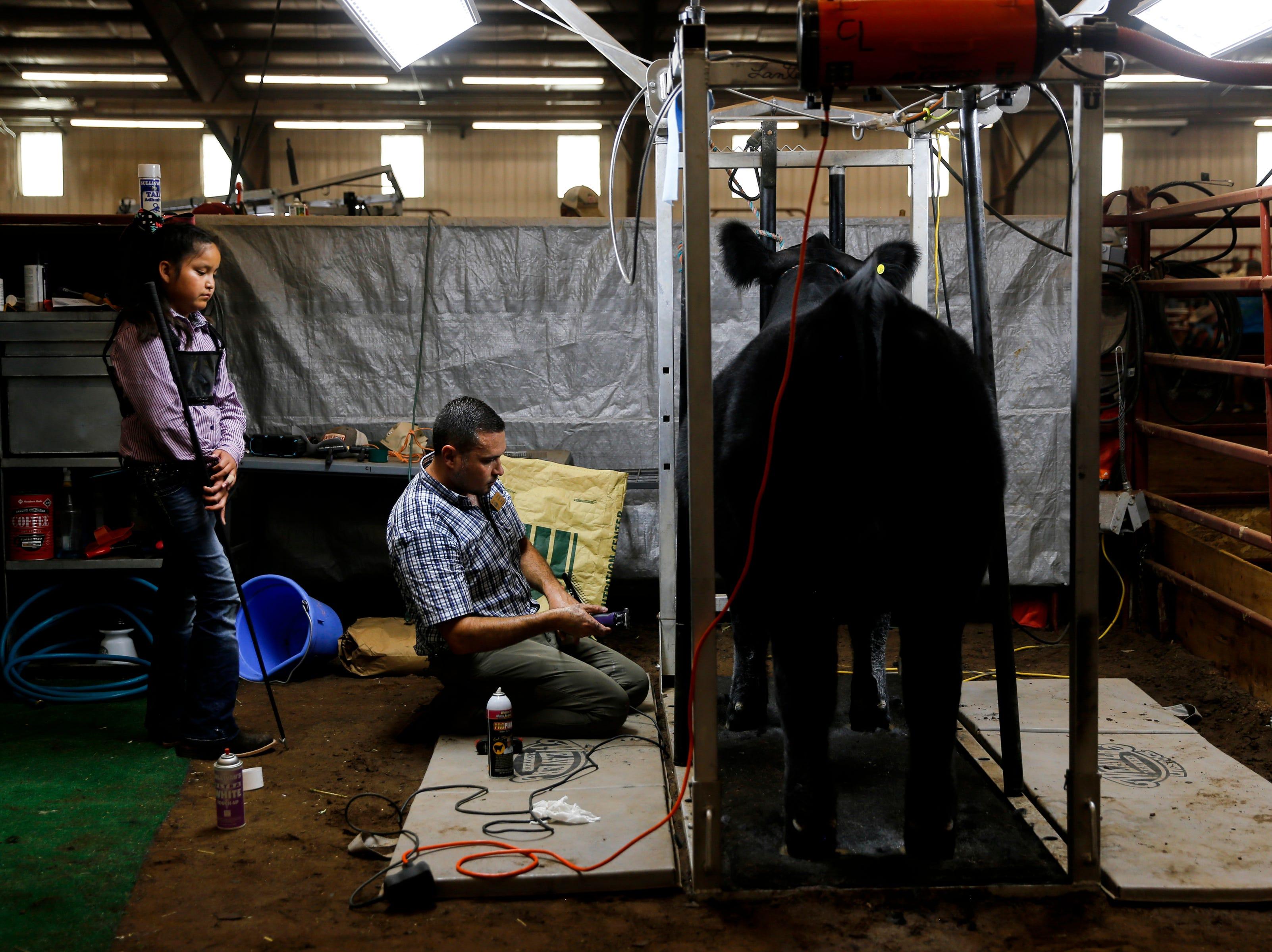 Tatum Latana, left, watches Davin Jacquez work on her steer Major, Thursday, Aug. 16, 2018 during the annual beef show at the San Juan County Fair at McGee Park in Farmington.
