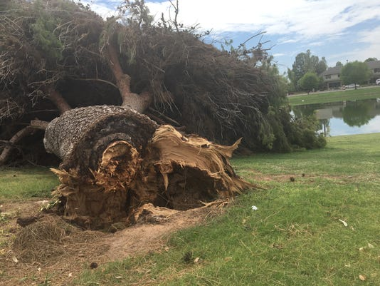 Dobson Ranch Golf Course storm damage