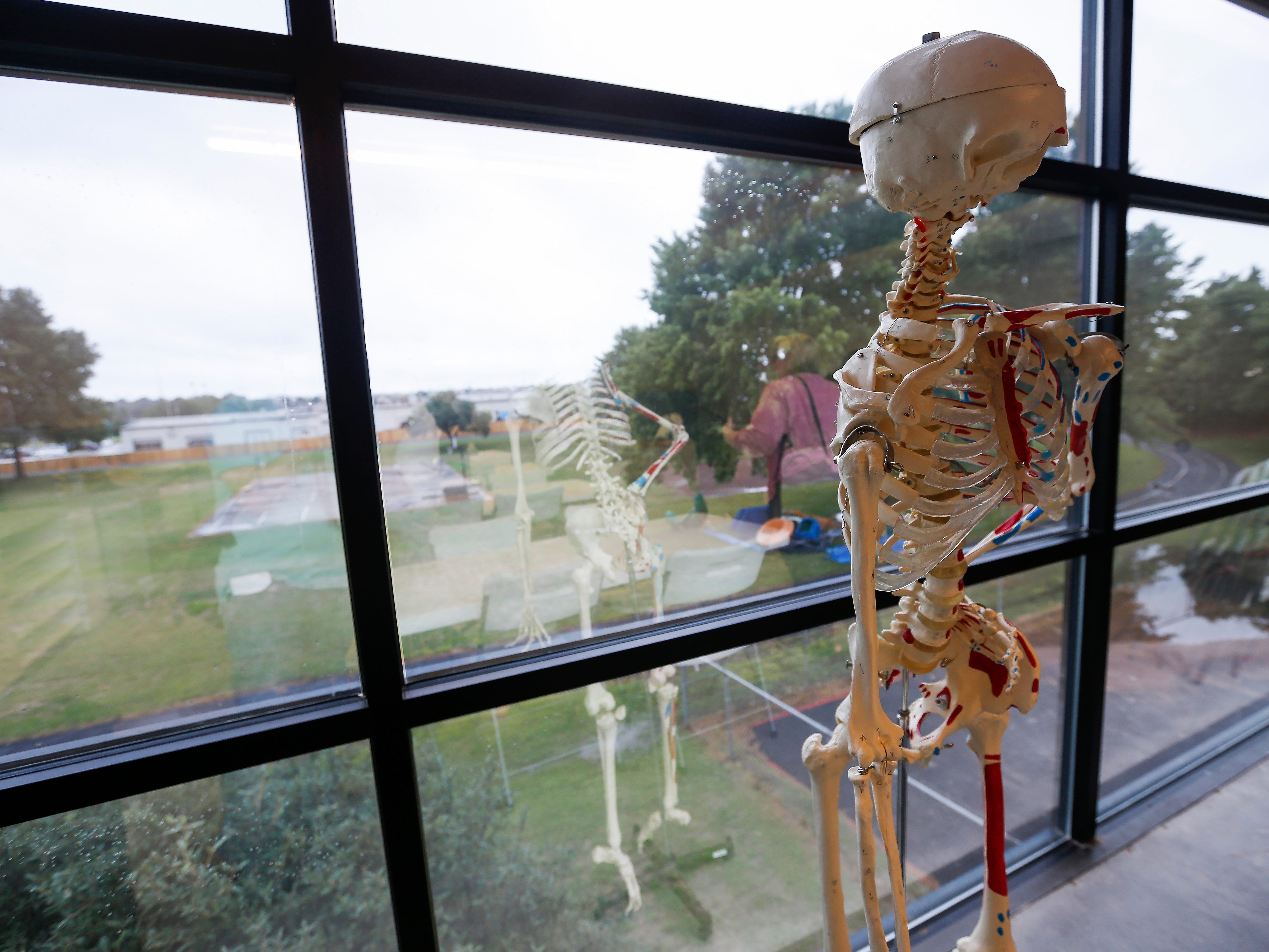 A skeleton hangs out near the window that looks out over the track and playground at the Summit Preparatory School's new location at 202 E. Walnut Lawn St.