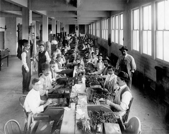 The image shows workers making cigars at the Kohlberg Brothers Tobacco Co., later La Internacional Cigar Factory.