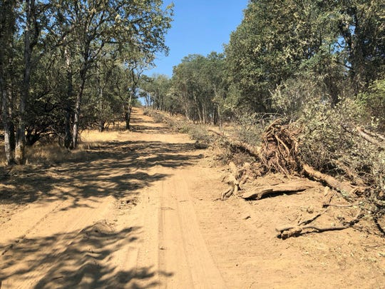 This photo taken Aug. 10 near Lakeport, Calif. shows a dirt path left behind when a bulldozer toppled trees in an effort to contain part of the largest wildfire on record in California. Even as flames continue chewing through forestland not far from here, crews are working to repair the damage wrought not by flames but by firefighters trying to stop them.