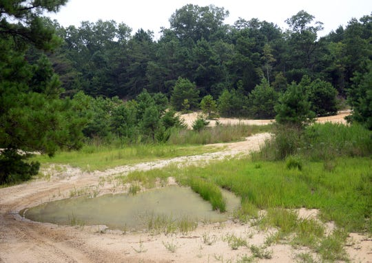 The New Jersey Conservation Foundation purchased 600 acres of land along Menantico Creek in Vineland that will become a nature preserve.