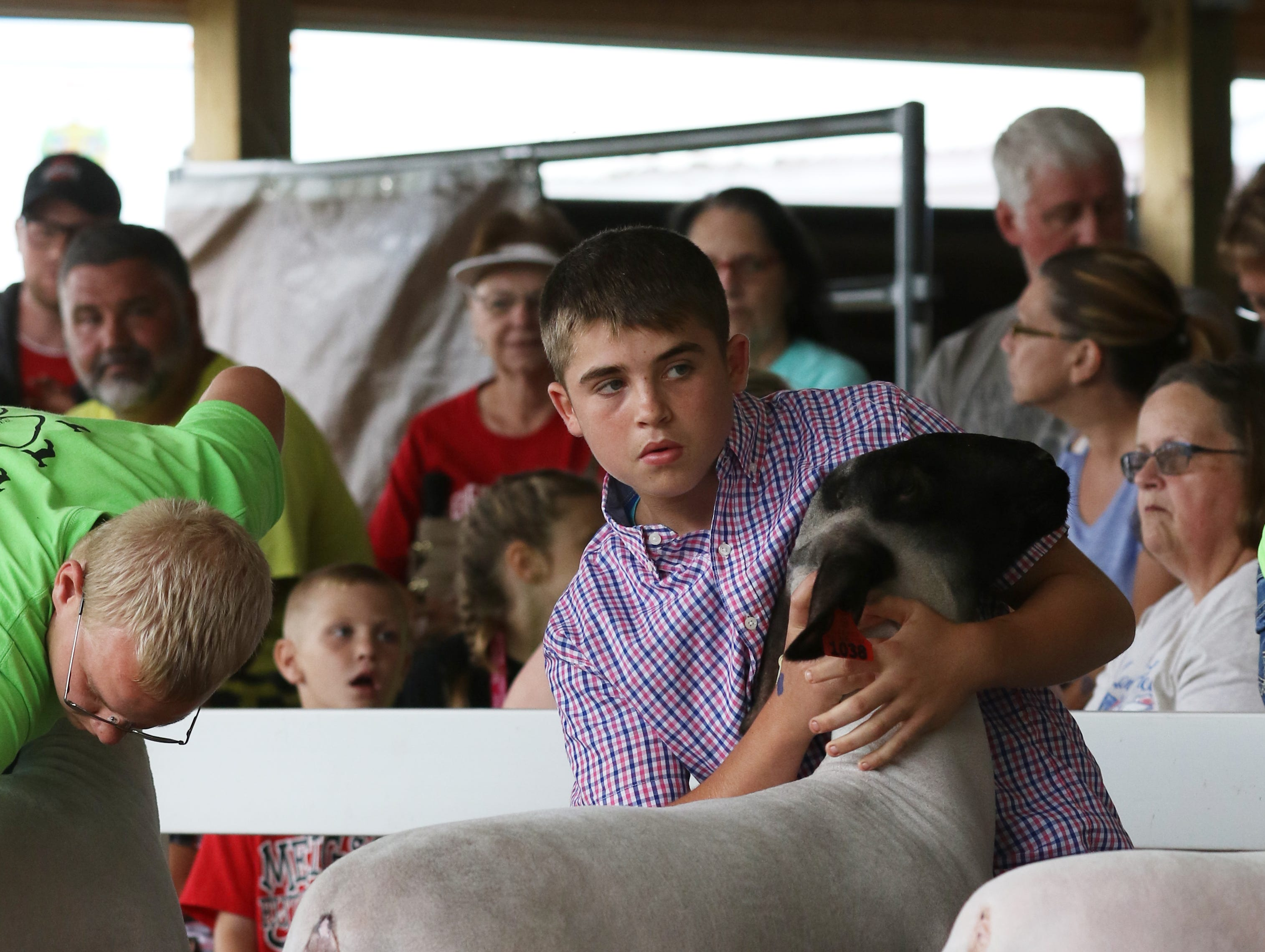 The Open Class Sheep Show at the Muskingum County Fair on Thursday.