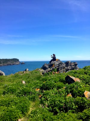 A traveler stops for a panoramic view of the ocean at Ragged Point in Roosevelt Campobello International Park.