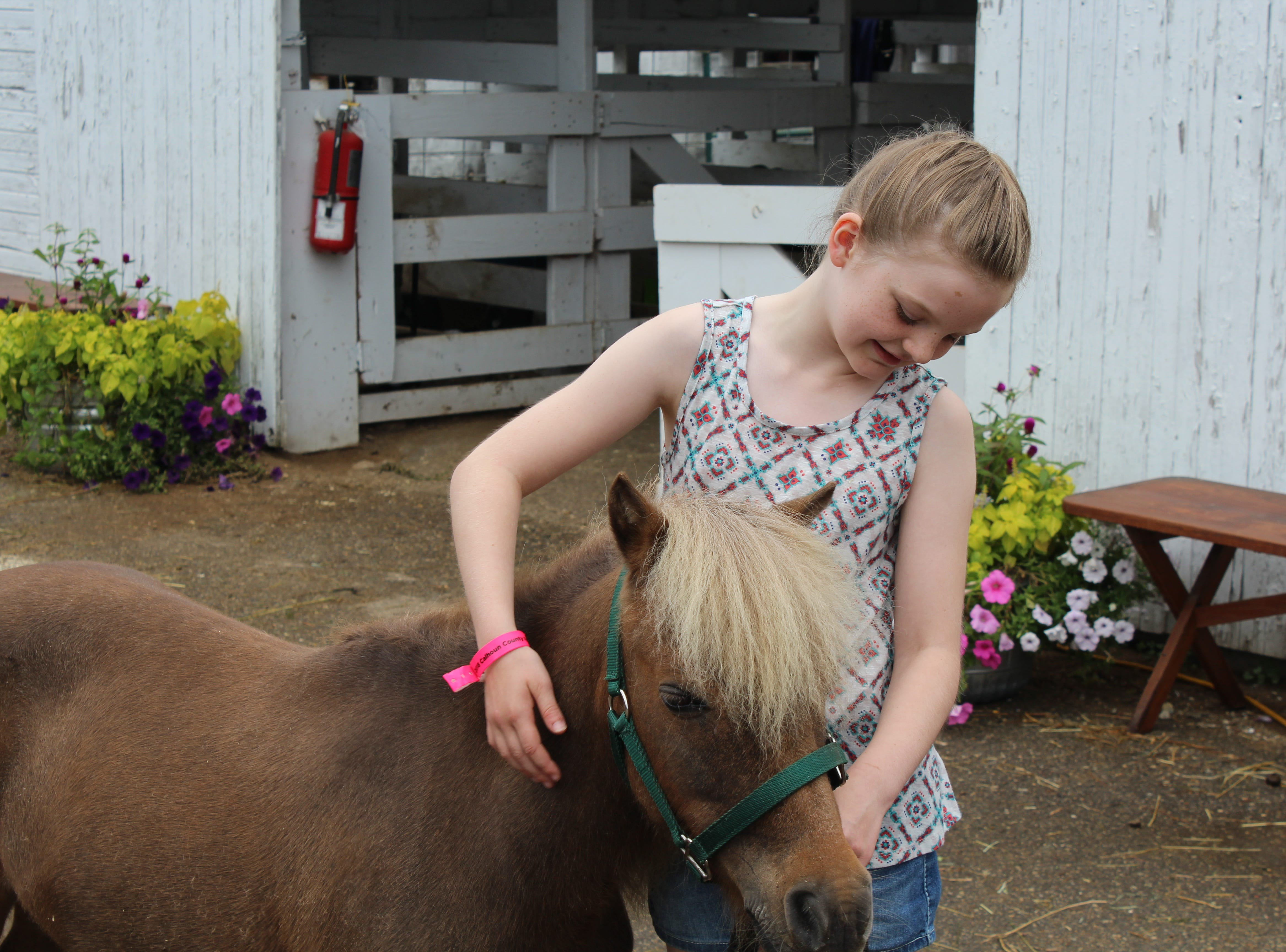 Maeve Russell, 10, of Bellevue shows off her miniature horse, Shamrock.