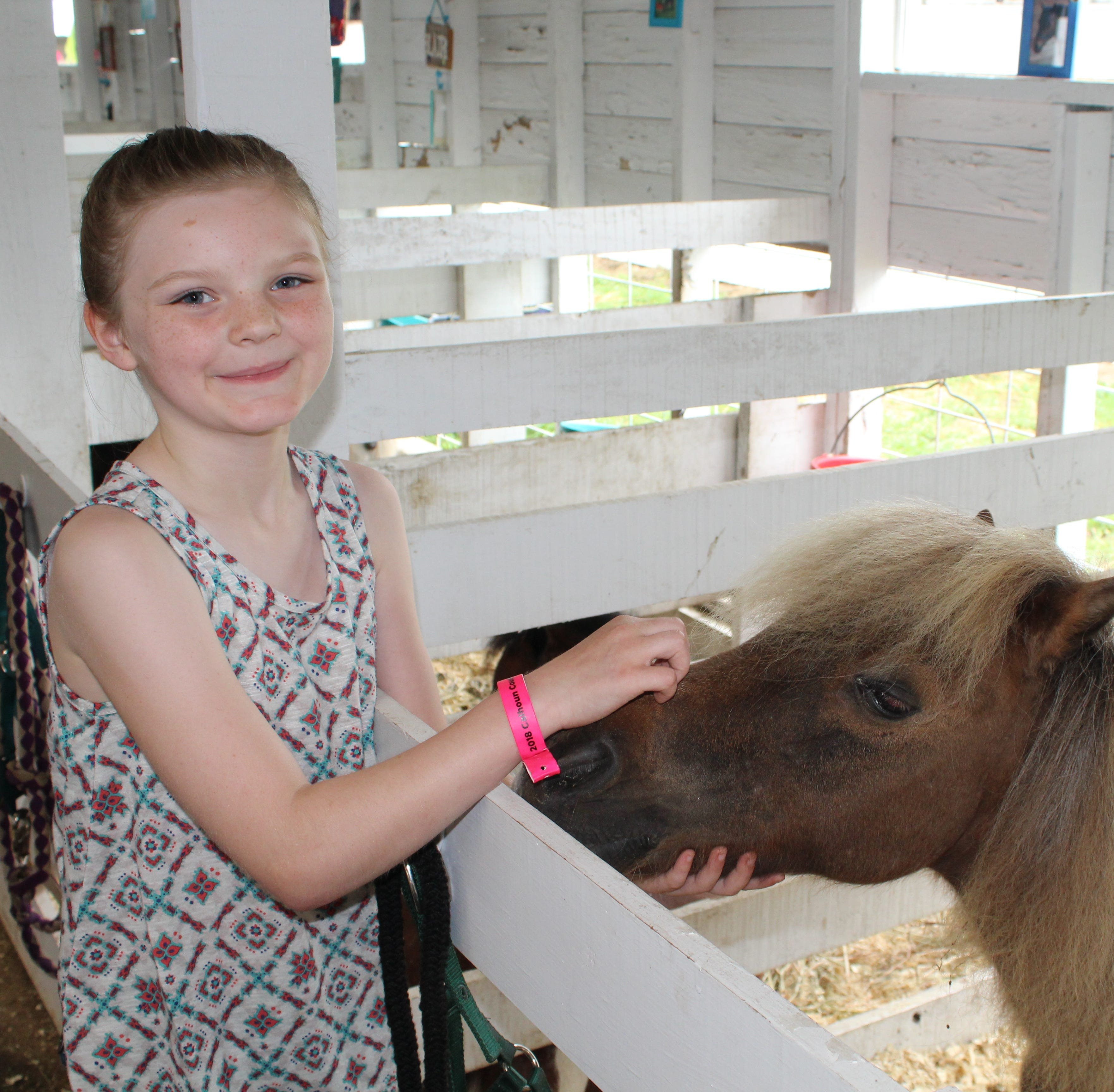 A club for small horses and small humans celebrates 10 years at Calhoun County Fair