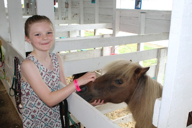 Maeve Russell, 10, of Bellevue shows off her miniature horse, Shamrock. Maeve is a member of the Mini Whinnies 4-H Club of Calhoun County.
