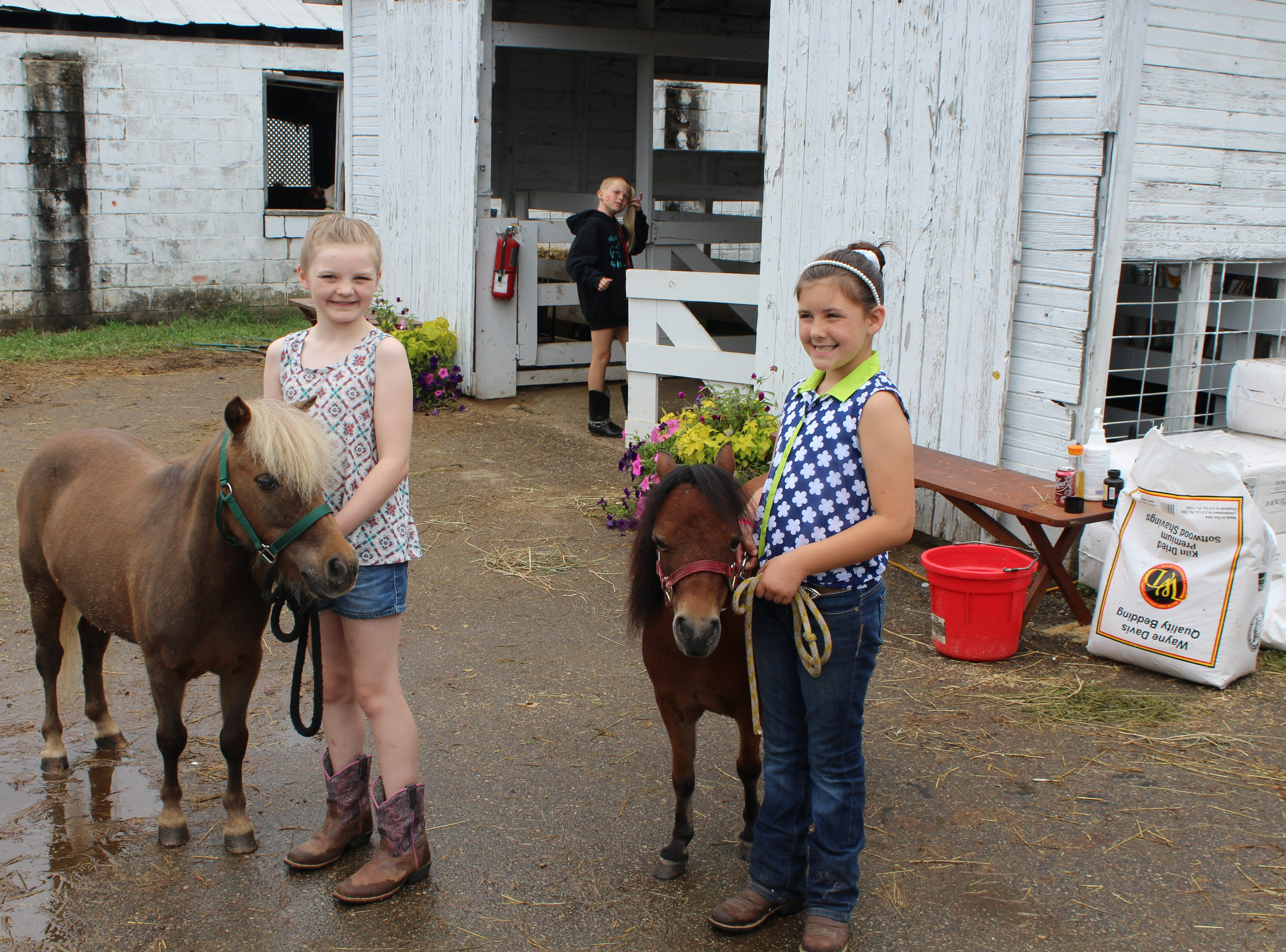 Maeve Russell and Ava Brodock are members of the Mini Whinnies 4-H Club. Members of the club show miniature horses at the Calhoun County Fair.