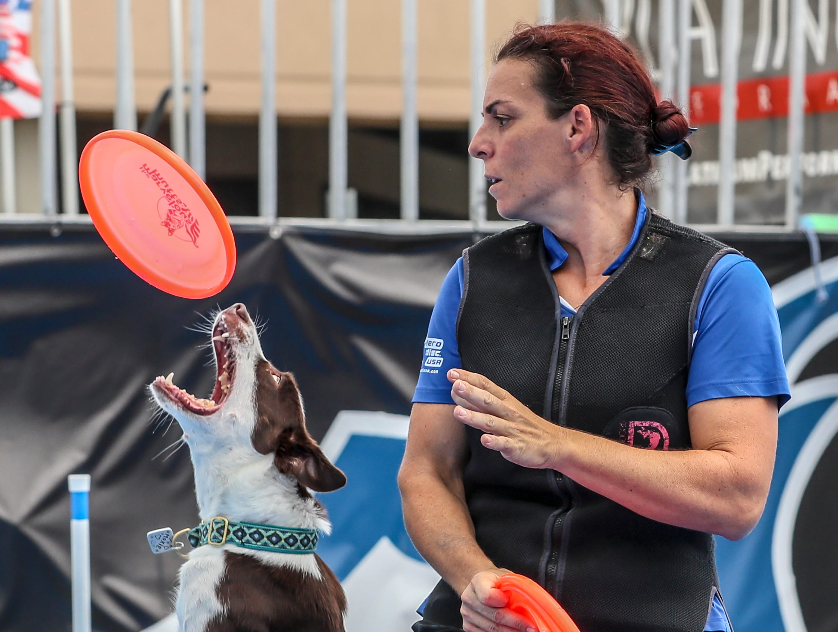 Andrea works with a canine athlete during the Marvelous Mutts show at the Kentucky State Fair on Friday afternoon.August 17, 2018