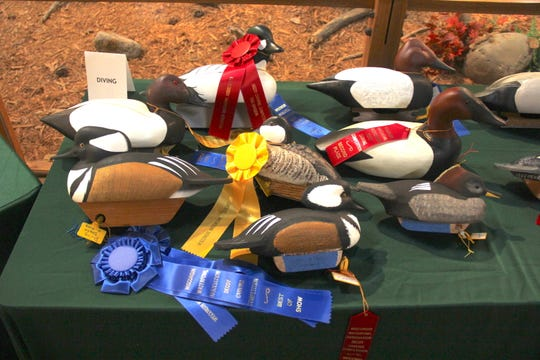 Entries in the Sconnie Diving category, including several ribbon winners, are displayed at the 2018 Wisconsin Decoy Carving Championships in Richfield, Wis.
