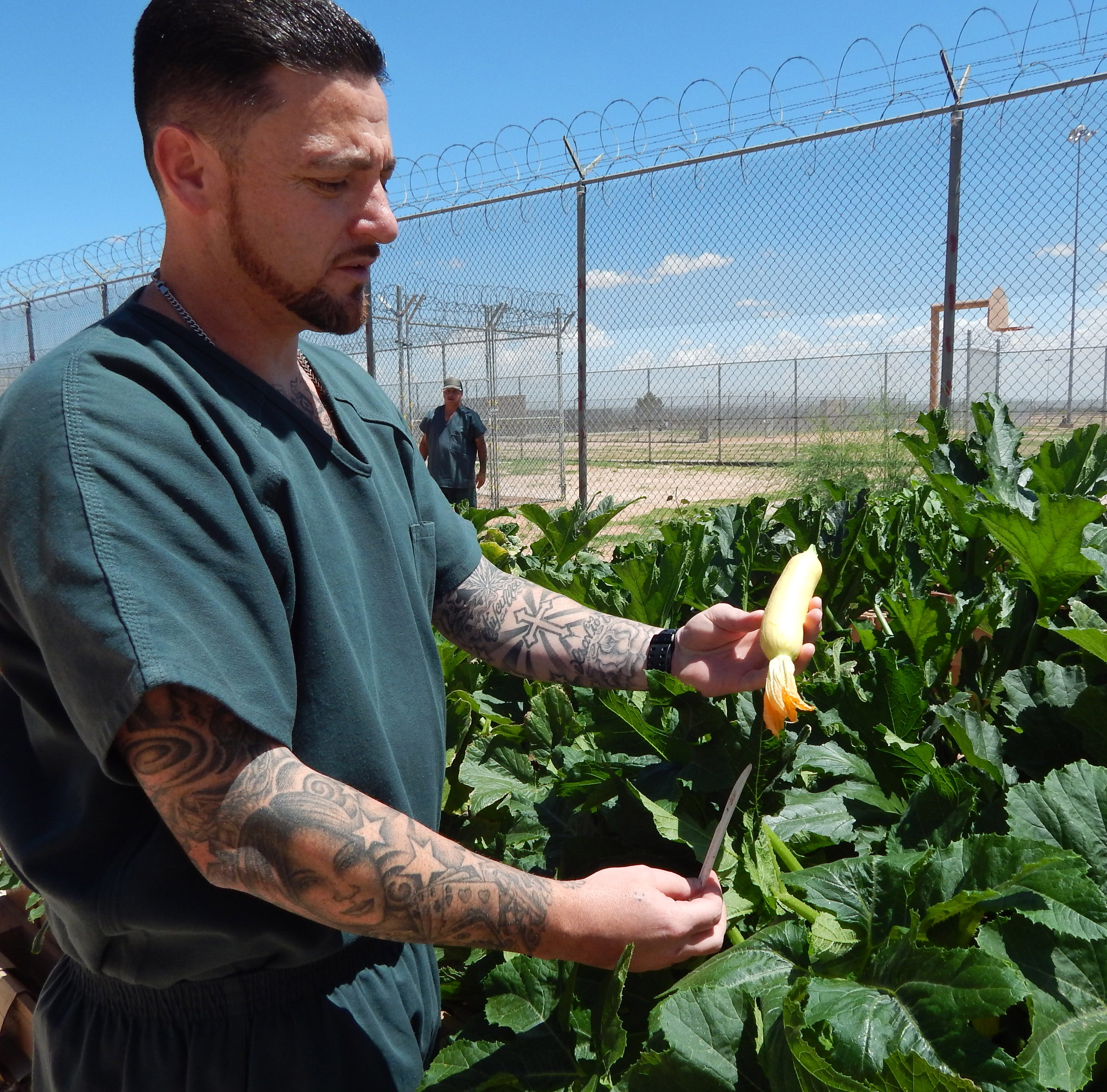 NMSU helps inmates grow skills at Southern New Mexico Correctional Facility