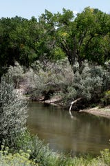 The Animas River is pictured on Friday, Aug. 17, 2018 by the Farmington Museum at Gateway Park. The city of Farmington's Infrastructure Capital Improvement Plan submitted to the state last year included extending the river trail system in two locations. The plan calls for spending $500,000 to extend the Among the Waters portion of the trail and $1.5 million to build a trail near Farmington Museum.