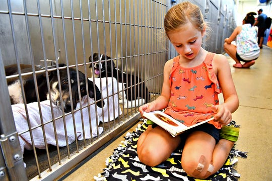 Nora Gladfelter, 5, right, of Conewago Township, reads to bonded pair Tundra, a German shepherd mix, left, and Bentley, a beagle mix, during the Tales for Tails kickoff event at the York County SPCA in Manchester Township, Friday, Aug. 17, 2018. The organization hopes to hold the event twice a month for first- through sixth-graders to read to adoptable dogs. For more information go to: www.ycspca.org. Dawn J. Sagert