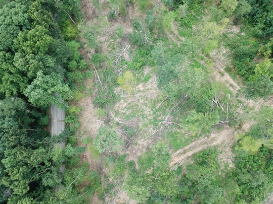 This submitted photo shot from a drone shows logging at the now closed Girl Scout Camp Echo Trail in southern York County.