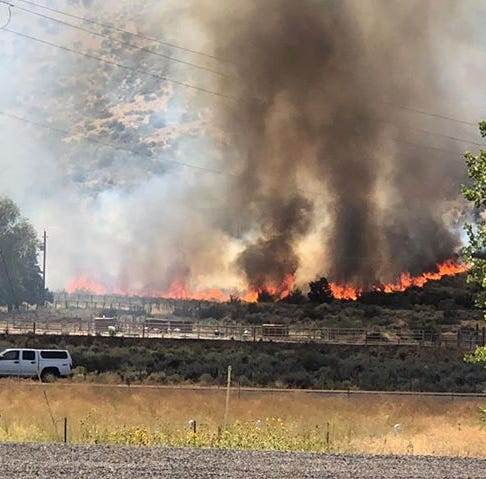 One outbuilding and 8 acres burned in Washoe Valley's Berry Fire