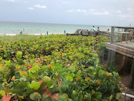 The ocean view at Kyle G's Prime Seafood in St. Lucie County.