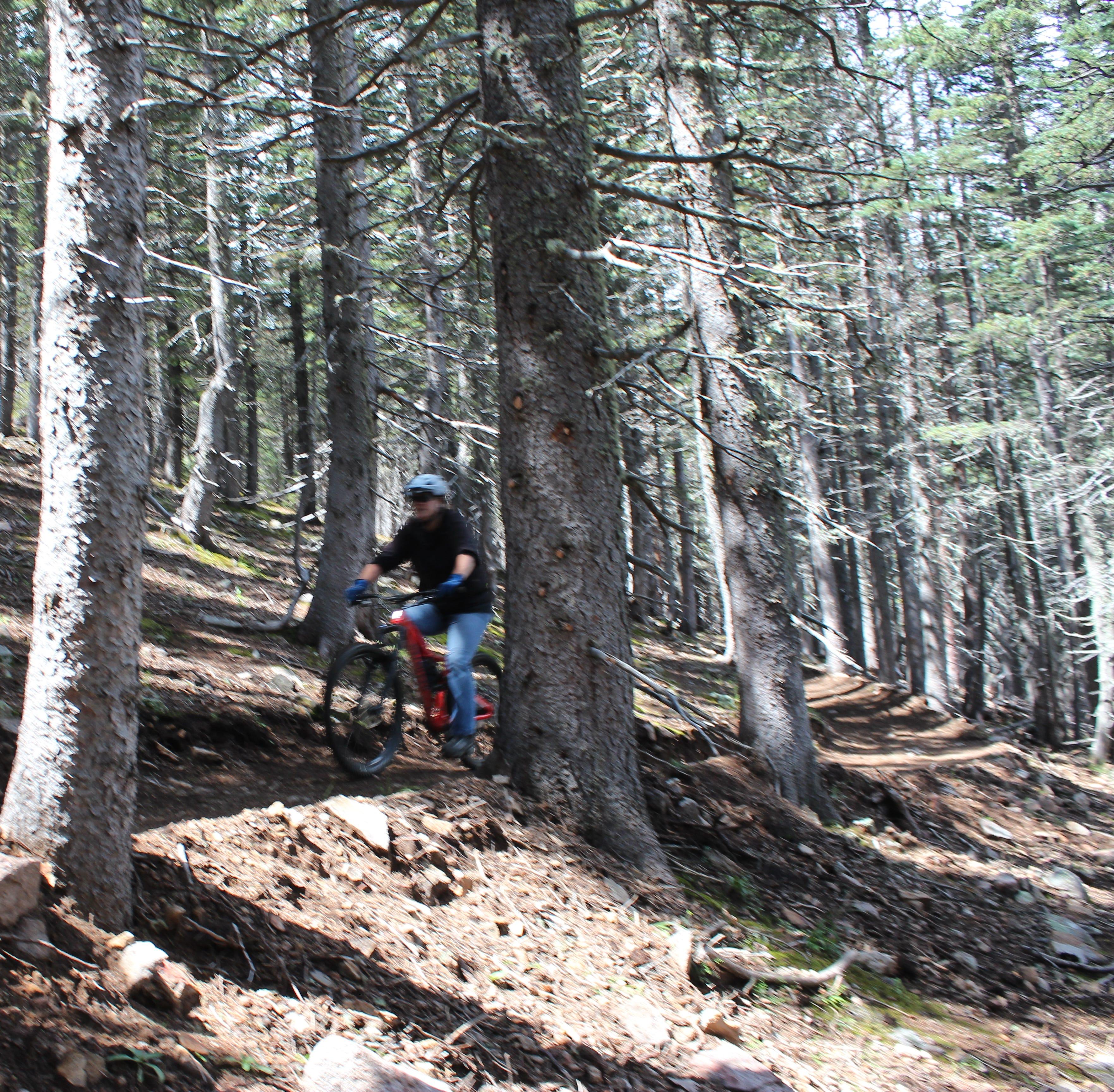 Enjoy the scenery on new mountain bike trail at Ski Apache in Ruidoso