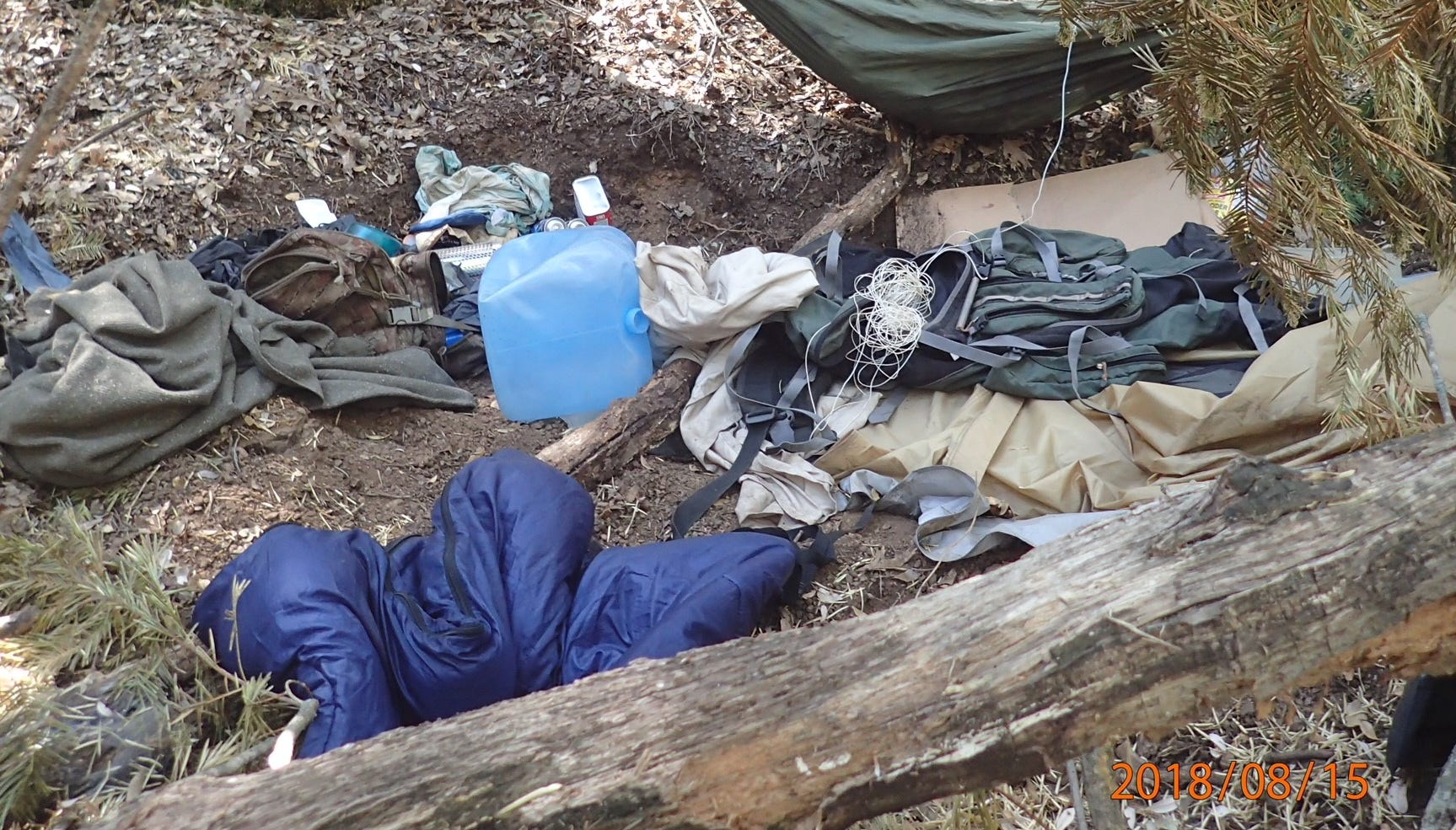 Tulare County detectives uncovered more than 10,000 marijuana plants near Coffee Camp Canyon.