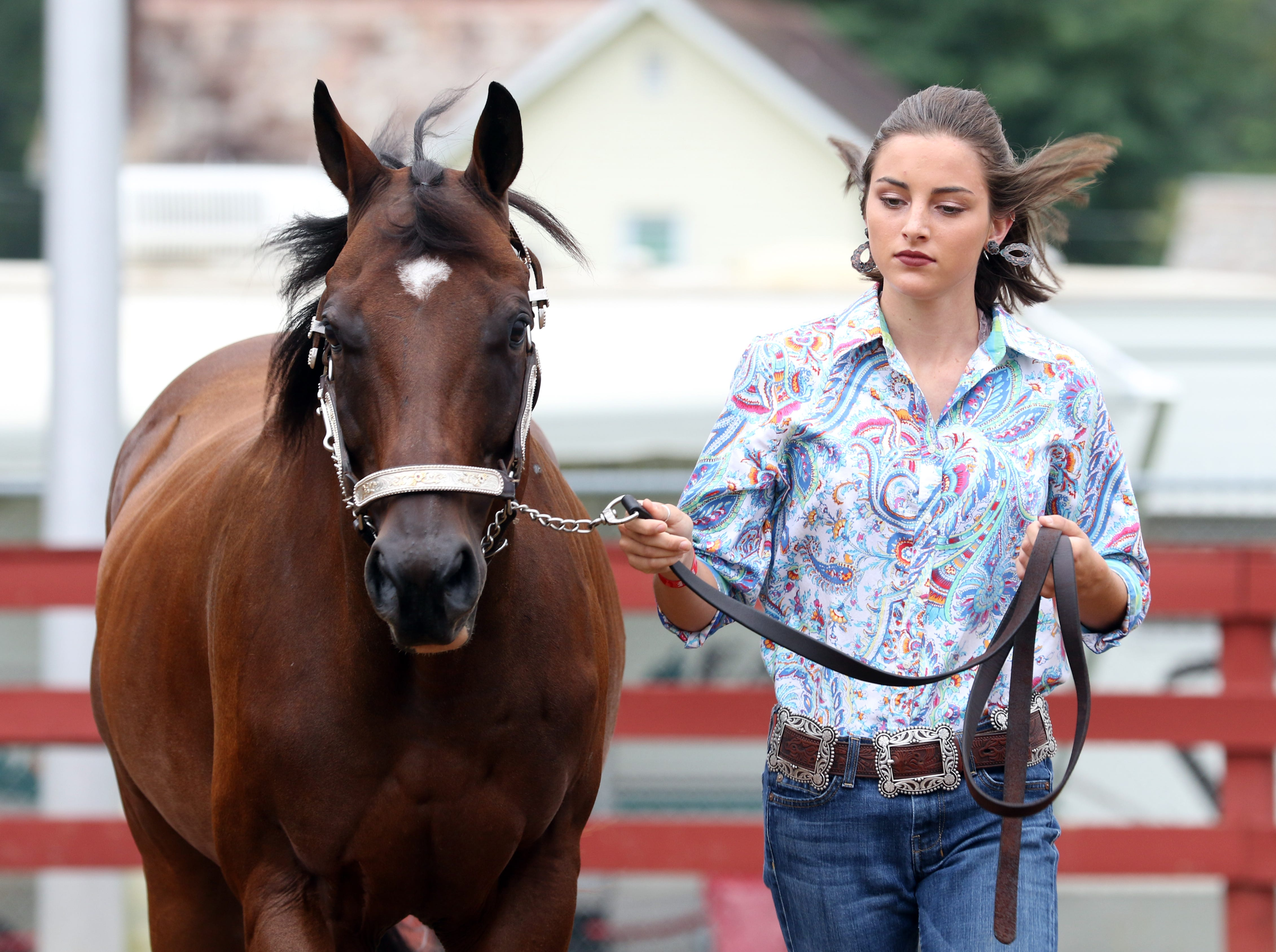 Hainsley Hatfield, 16, of Adamsville, shows a horse during the Showman of Showmen competition at the Muskingum County Fair on Friday.