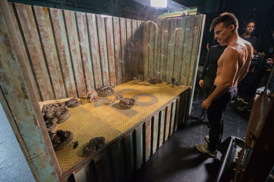 Lord Nil looks at a case of rattlesnakes that are part of his escape act in Tuesday's 'America's Got Talent' live show.