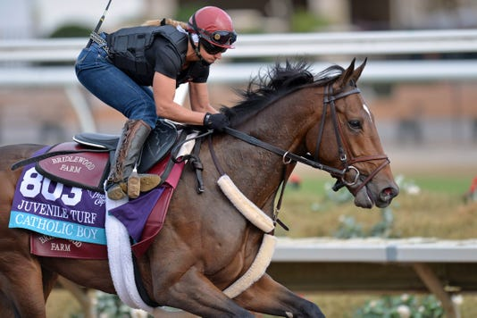 Horse Racing 34th Breeders Cup Workouts
