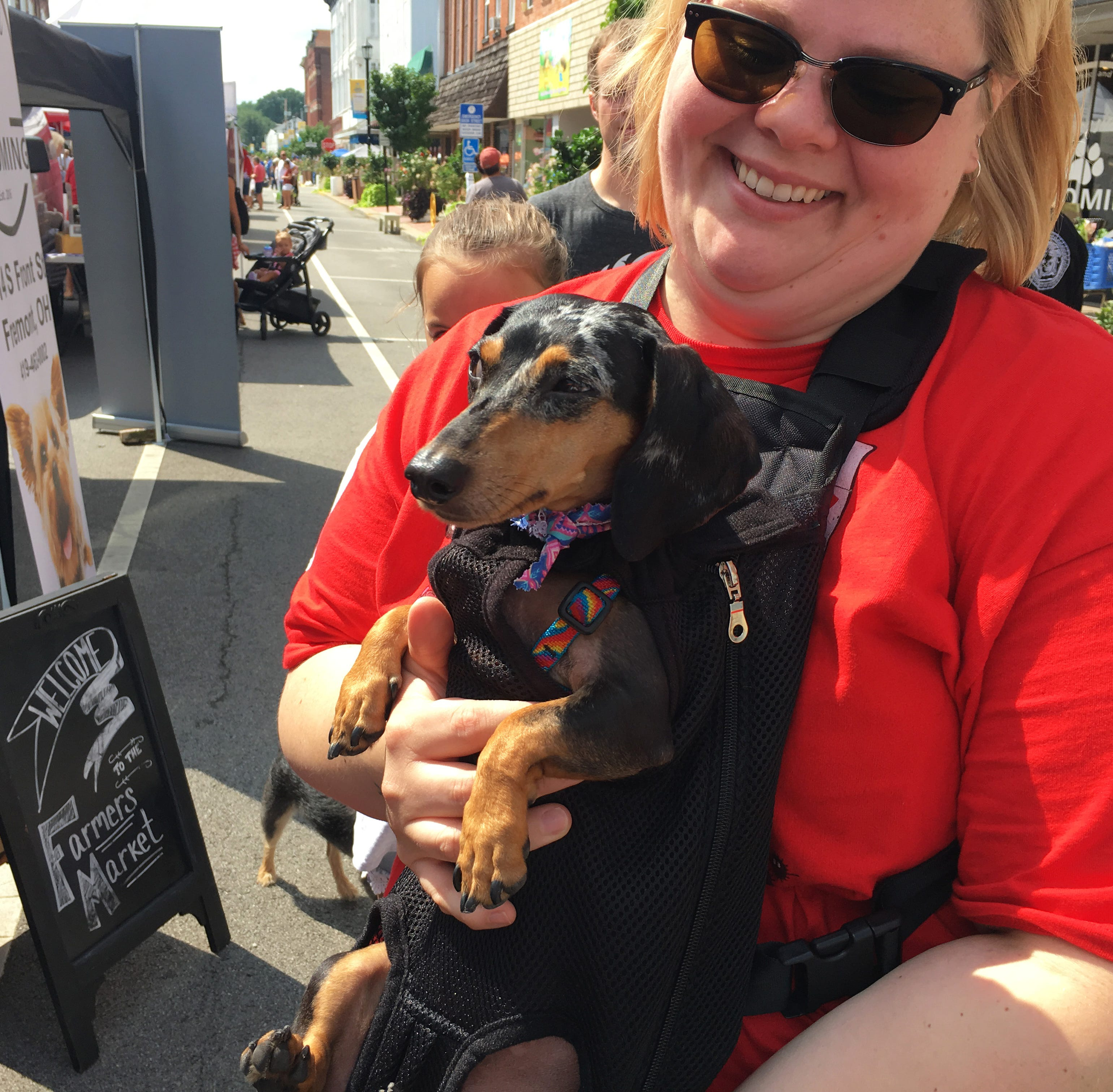 Fremont rolls out red carpet for canines