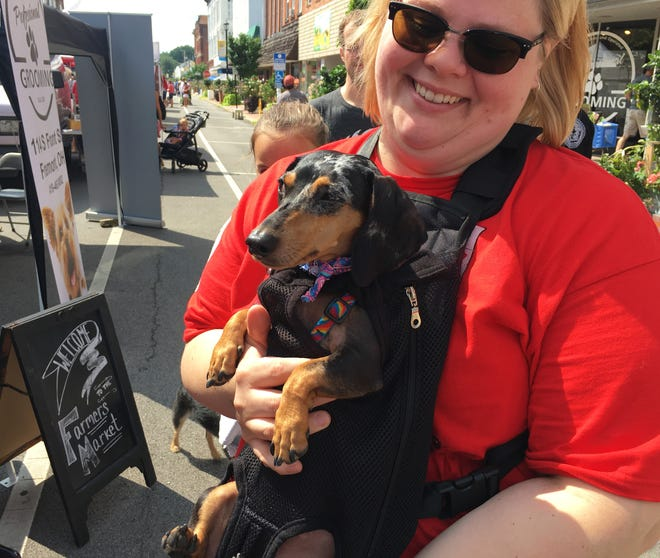 "Mandy Vurris of Green Springs and her dog, Fumiko, spend the afternoon at the Downtown Fremont Farmers Market with the theme ""Dog Days of Summer"" on Saturday."