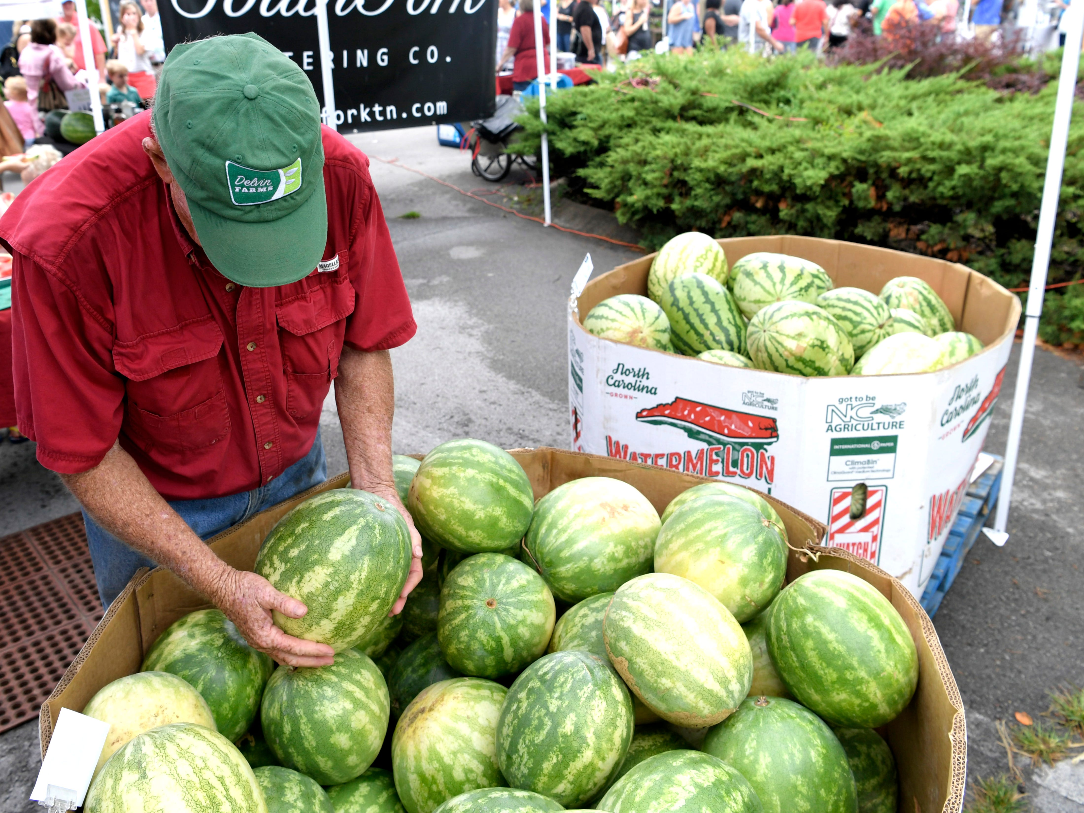 College Grove farmer Hank Delvin Sr. picks out the perfect watermelon for a customer at the Franklin Farmers Market in Franklin, Tenn. on Saturday,  August 18, 2018.