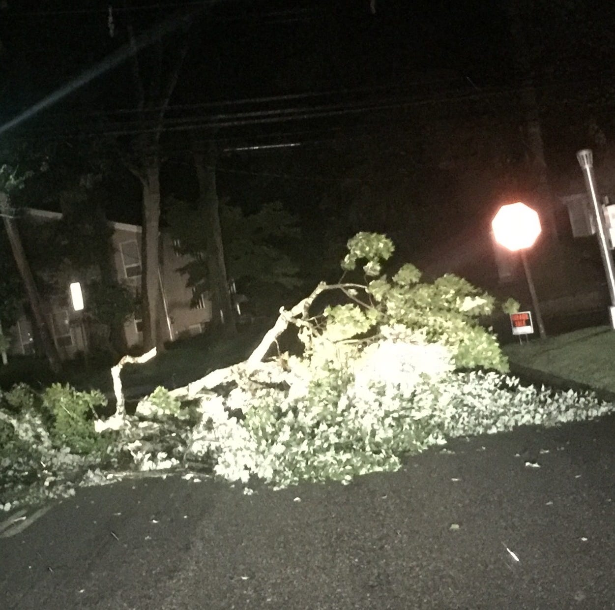 Friday storm knocks out power for thousands in North Jersey