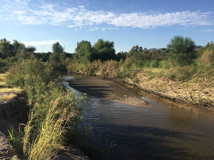 A stretch of the Santa Cruz River in Tucson.