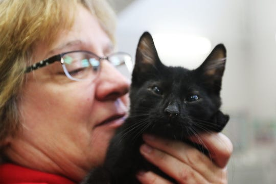 Bennett, the first animal adopted at the  the Willamette Humane Society's Clear the Shelters event on Saturday, Aug. 18, 2018, is a kitten with special needs.