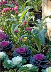 Edible landscaping is a fun and tasty way to liven up your property.