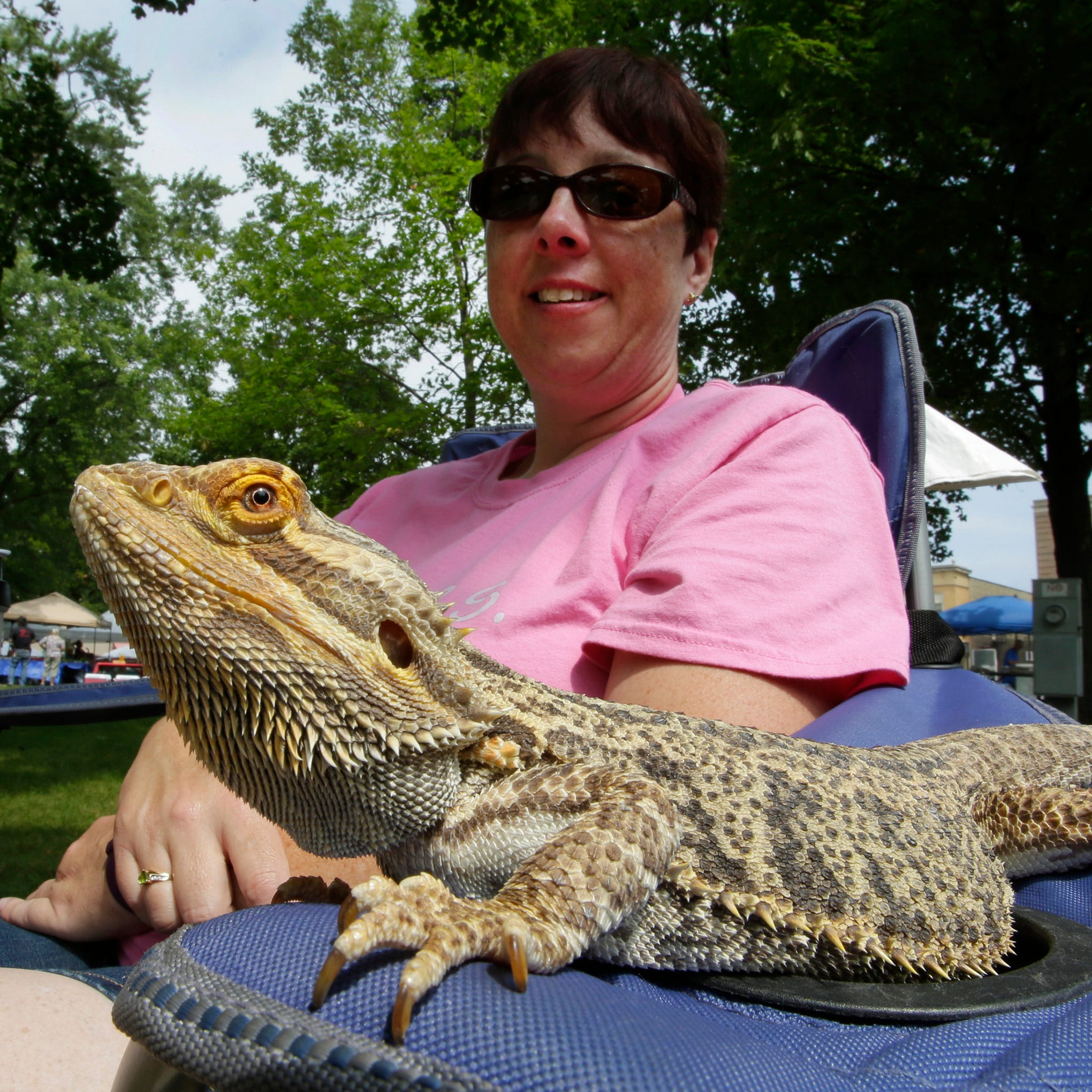 Sarah Goltry of Sheboygan, sits by a Bearded Dragon from the Lakeshore Avian and Reptile Rescue and Sanctuary group during the 27th annual Earthfest, Saturday, August 18, 2018, at Fountain Park in Sheboygan, Wis.