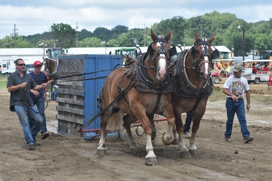 Horse Pull 1