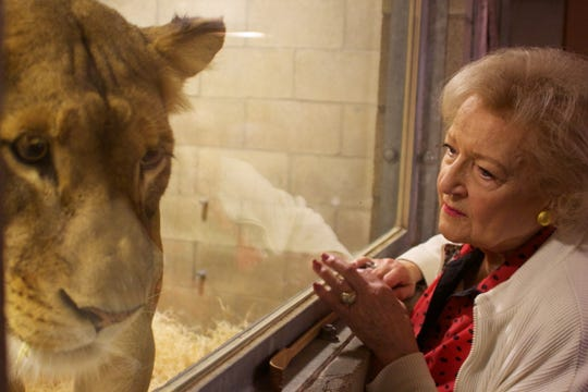 Betty White, seen here with Oshana the lioness, has long been a passionate advocate for animals.