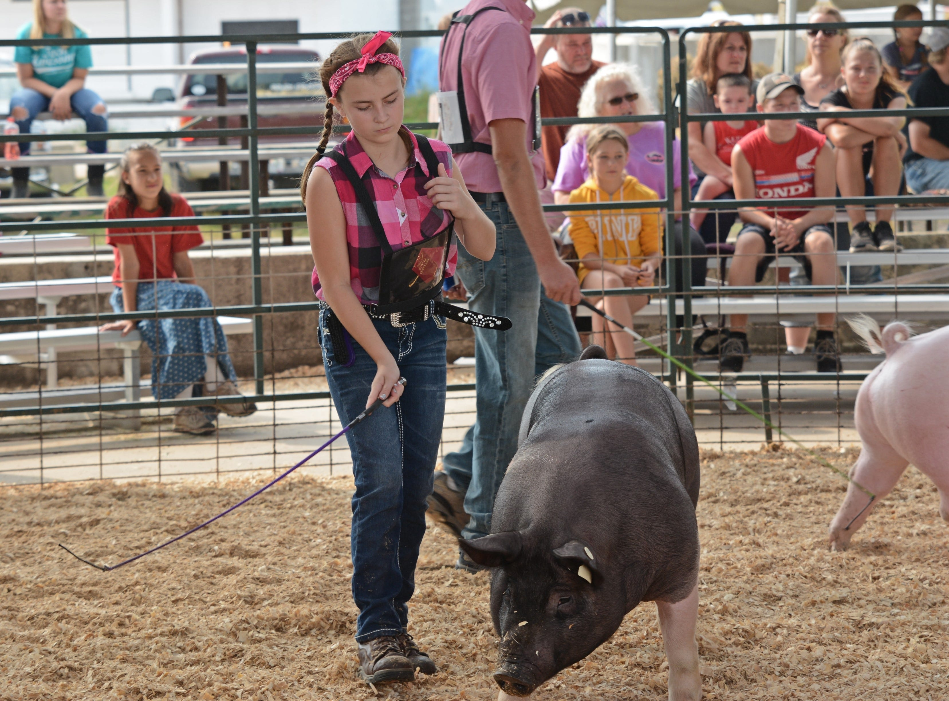Amber Seitz of Morgan Badgers 4H Club shows her pig at the Swine Show at the Oconto County Fair on Friday, Aug. 17. She won the Swine Heavyweight Class.